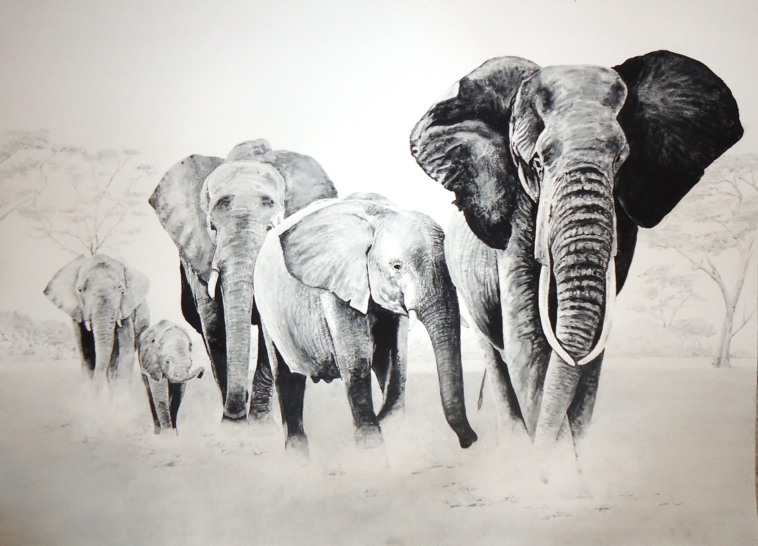 A painting of a family of elephants by Keith Cains.